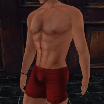 system torso