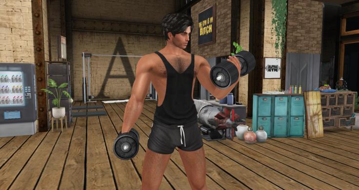 gym 04
